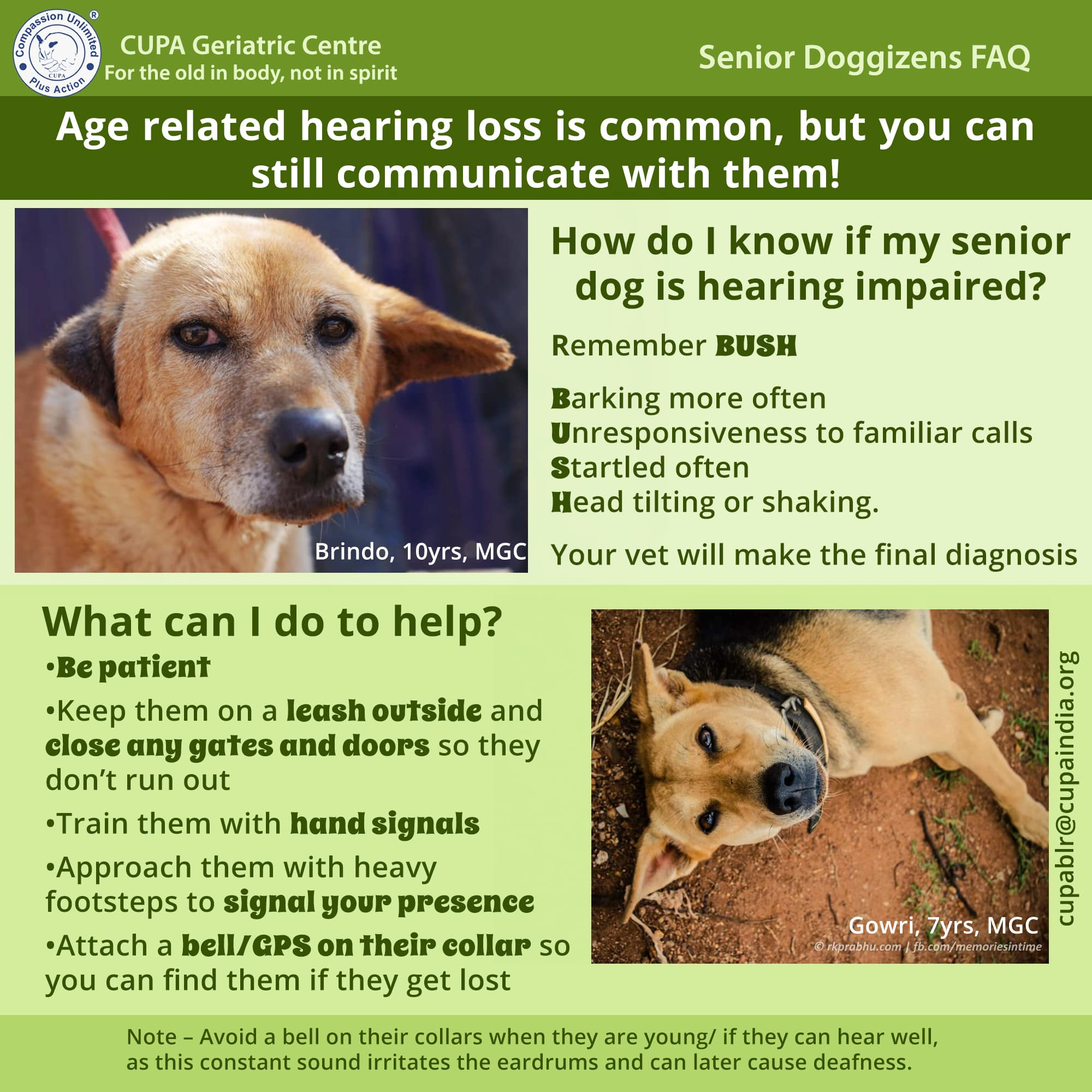 AGE RELATED HEARING LOSS IS COMMON, BUT YOU CAN STILL COMMUNICATE WITH THEM!
